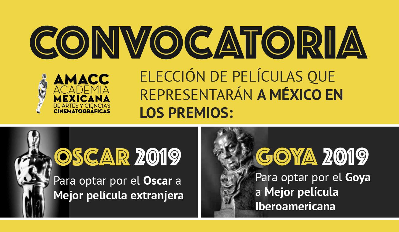 La AMACC lanza la convocatoria Goya y Oscar 2019