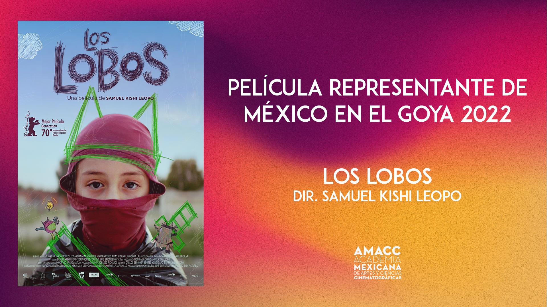 PELÍCULA REPRESENTANTE DE MÉXICO EN LA 36 EDICIÓN DE LOS PREMIOS GOYA 2022